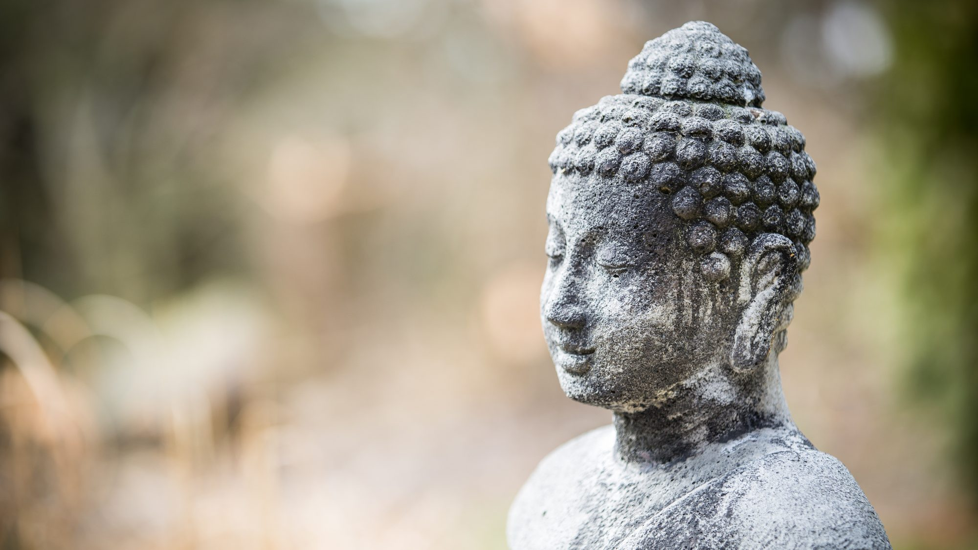 Qi Gong - Der Weg von den 10.000 Dingen zum Kern unserer Lebenssubstanz